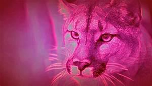 Pink Panther Wallpaper ·① WallpaperTag