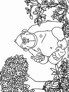 Jungle Animals Coloring Pages Wild Animals Coloring Book Coloring Home
