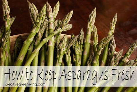 how to preserve asparagus how to keep asparagus fresh for a week or more creative green living