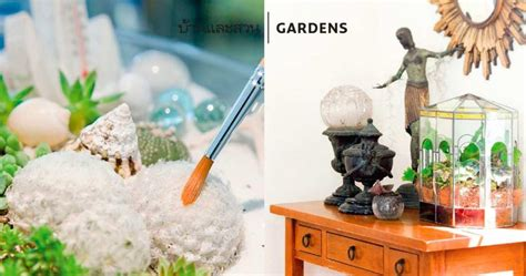 [DAILYGUIDE] มา จัดสวนในขวดแก้ว ใสกันเถอะ - บ้านและสวน