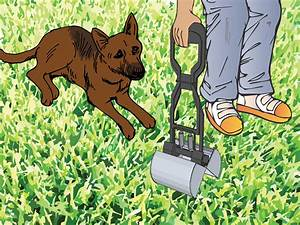 How to Pick Up Dog Poop: 15 Steps (with Pictures) - wikiHow