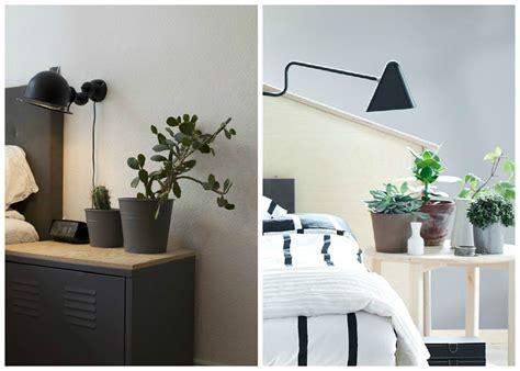 plante dans la chambre plantes d 39 intérieur décorez avec des plantes vertes