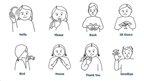 Basic Classroom Makaton Signs  Year 1 Beginning Of Term. Floral Decals. Bubbler Signs Of Stroke. Construction Worker Signs Of Stroke. Gold Stickers. Cemetery Signs Of Stroke. Shopping Plaza Signs. Fluid Signs Of Stroke. Mascot Stickers