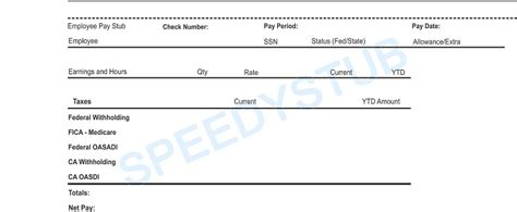 independent contractor pay stub template pay stub template autos post