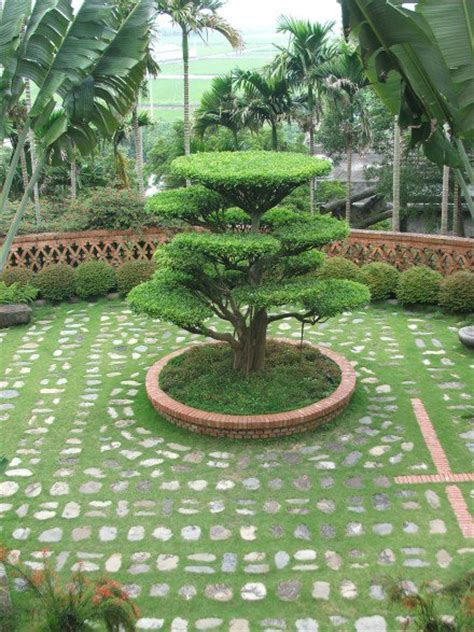 Home Garden Design Ideas India by Indian Garden Garden For Your Inspiration
