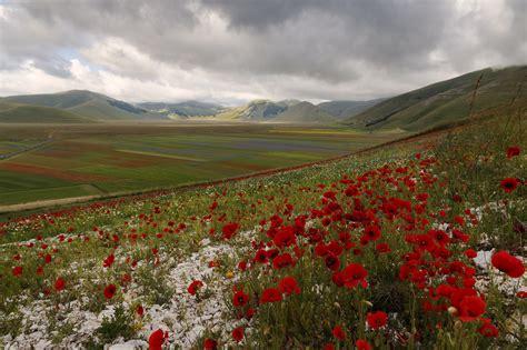 italian plain    landscape photography
