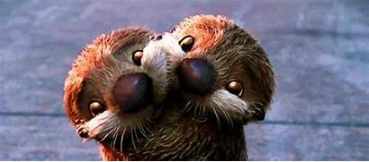 Otters Cuddle Gifs Tenor Otter Hug Dory