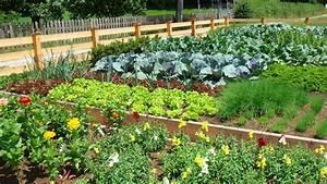 Image Gallery large vegetable garden design