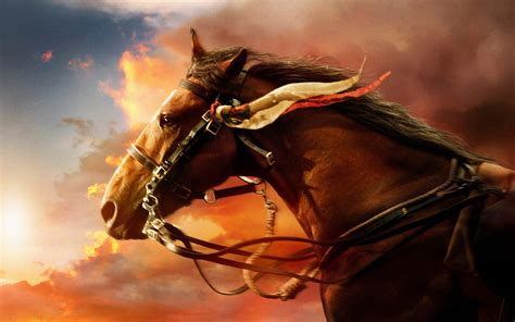 War Horse Wallpapers | HD Wallpapers | ID #14678