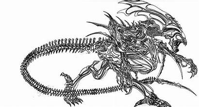 Alien Praetor Deviantart Aliens Xenomorph Reina Predator
