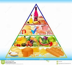 Ern U00e4hrungspyramide  Vektor Abbildung  Illustration Von