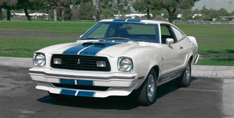 World Mustang's