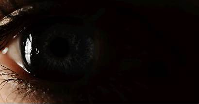 Eyes Human Macro Reveal Awesome Dahlen Asset