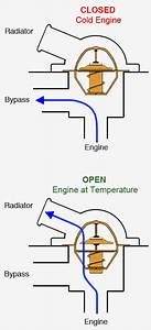 Engine Thermostat Diagram