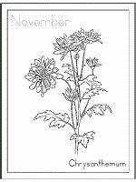 May Calendar Theme Birth Flowers Coloring Pages