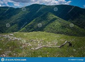 The, Beautiful, Green, Mountain, On, Summer, Time, Stock, Image