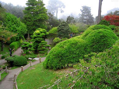 Japanese Tea Garden San Francisco Photos Aravinda Loop