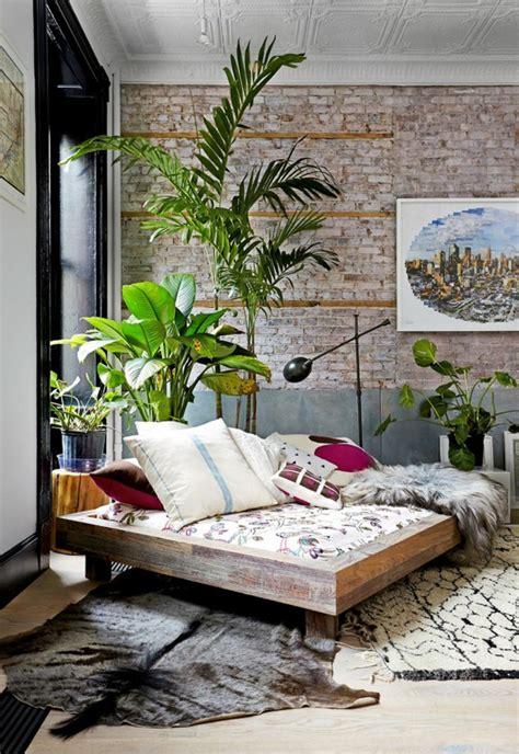 plante dans une chambre la plante verte d int 233 rieur