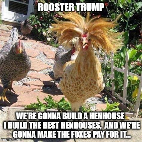 Rooster Meme - if trump was a rooster imgflip