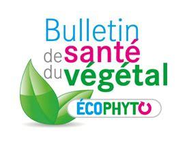chambre d agriculture de l aube bulletins de santé du végétal grand est