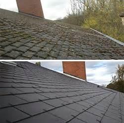 anti mousse professionnel pour toiture isolation sous