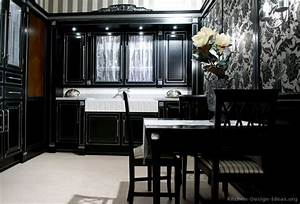 Cabinets for kitchen black kitchen cabinets with for Black kitchen cabinets ideas