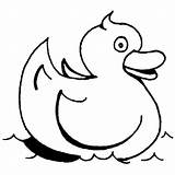 Coloring Rubber Ducky Swimming Bath Going Coloringsky sketch template