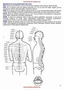 Pin En Acupuntura Meridianos Acupuncture Meridians