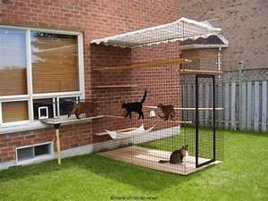145 best cat enclosures images on pinterest cat With best dog enclosures
