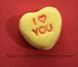 Cute Love Quotes for Your Girlfriend - Apihyayan Blog