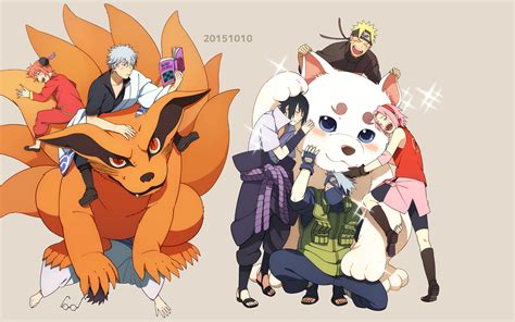 sadaharu gintama hd wallpapers background images