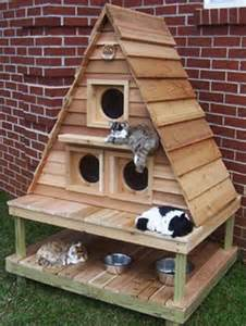 outdoor cat houses diy pallet furniture for your cats pallets designs