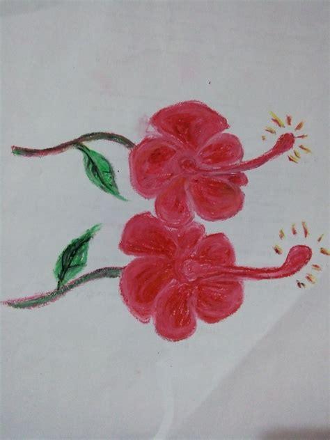 mewarnai bunga kembang sepatu