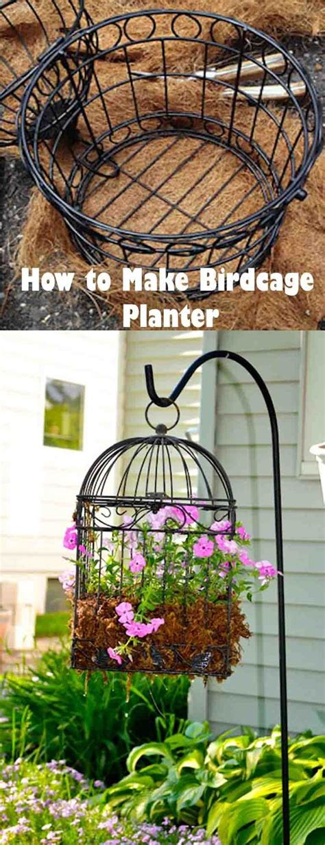 Amazing Collection Eye Catching Birdcage Planters For