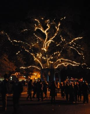 danville tree lighting 2017 danville tree lighting set for friday news