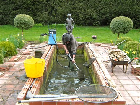 Clean Backyard Pond by Denchworth Ponds And Gardens