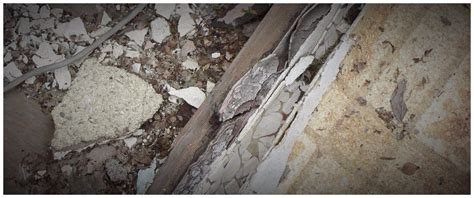 services asbestos inspection