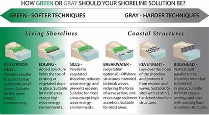 Shoreline Techniques Living Shorelines Stabilization Sea Soft
