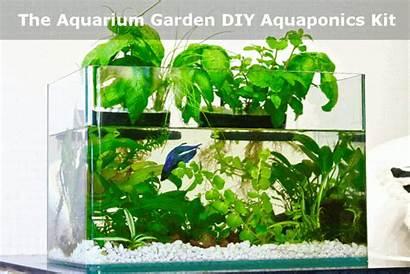 Garden Aquaponics Aquarium Diy Kit Fish Tank