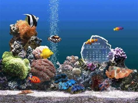 arriere plan bureau anim gratuit fondo de escritorio de acuario gratuito