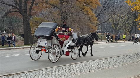 Photo entry: Carriage Ride