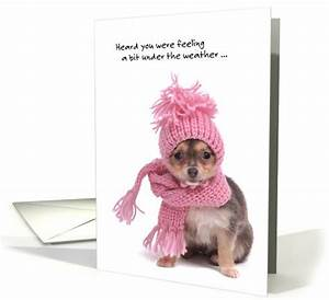 Get well soon, cute dog with scarf card | Get well, Wells ...