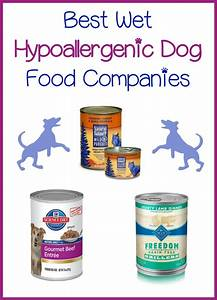 3 best wet hypoallergenic dog food companies for Best hypoallergenic dog food