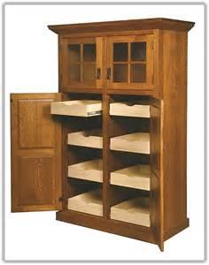 pantry cabinet ideas kitchen kitchen pantry storage cabinet home design ideas