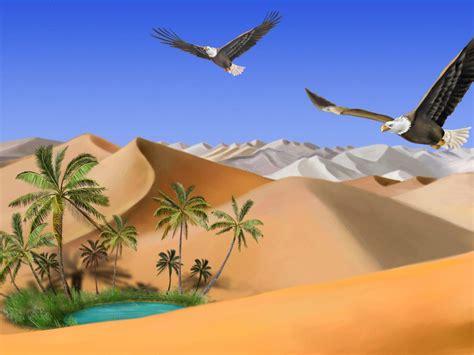 rredatory birds bald eagle flying   eagles mountains