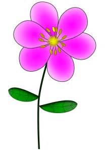 carnation flowers mẫu vẽ bông hoa nhỏ định dạng png