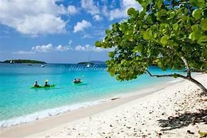 37 best cruise ship towel animals images on pinterest With us virgin islands honeymoon