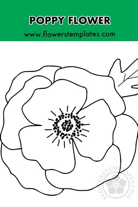 poppy  leaf template flowers templates