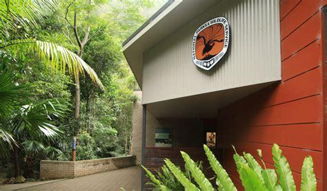 minnamurra rainforest centre nsw national parks