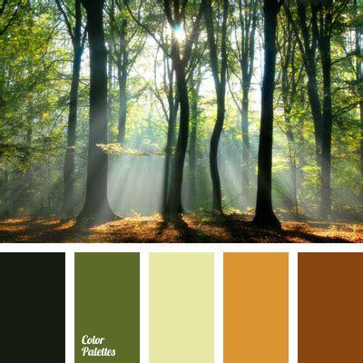 Color Of Thick Forest  Color Palette Ideas